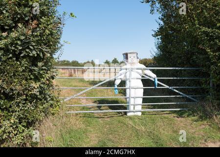 Taille de la vie vue inhabituelle sur la voie de campagne habillée par l'abeille garde-gardienne portant un uniforme élégant dans le jardin devant derrière la porte barrière de service Banque D'Images