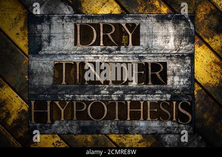 Dry Tinder hypothèse texte formé avec de vraies lettres de jeu de caractères authentiques sur fond gris argenté vintage cuivre et or Banque D'Images