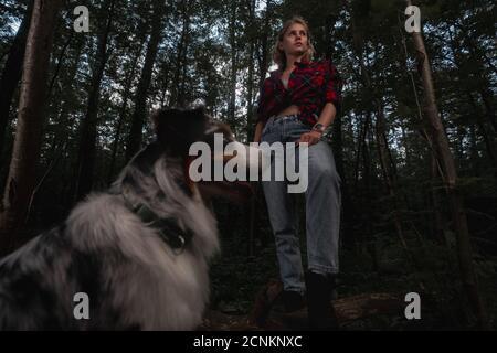 Chien australien avec une belle femme routard qui se baladie et fait de la randonnée dans la forêt. Style de vie actif avec les animaux. Banque D'Images