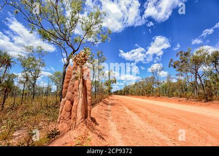Vue imprenable sur Central Arnhem Road avec poussière rouge et un grand termite, East Arnhem Land, territoire du Nord, territoire du Nord, Australie