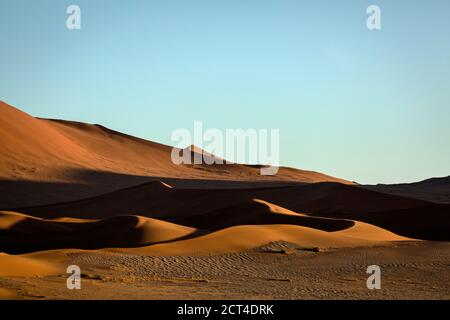 Dunes de sable rouge sous la lumière du matin à Sossusvlei, Namibie.