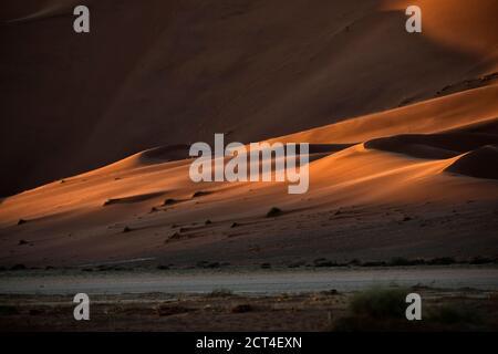 Résumé contrasté des dunes de sable rouge riches en oxyde dans la grande mer de sable de Namibie.