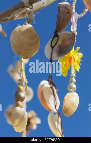 L'Espagne, Îles Baléares, Formentera, arbre des désirs aux moules
