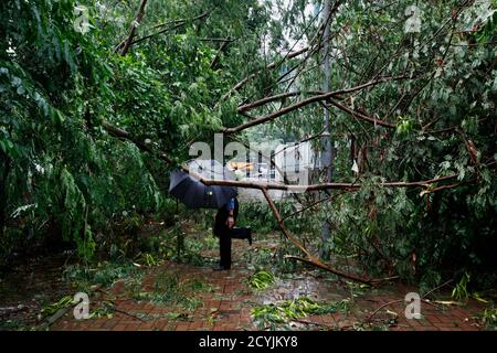 A man walks under fallen branches on a pavement at a residential district after Typhoon Usagi hit Hong Kong September 23, 2013. A powerful typhoon hit Hong Kong and the southern China coast on Monday, killing at least 20 people on the mainland, crippling power lines and causing flooding and gale force winds. Typhoon Usagi, the strongest storm to hit the Western Pacific this year, began pounding the Asian financial centre late on Sunday. More than 370 flights were cancelled. REUTERS/Bobby Yip (CHINA - Tags: DISASTER ENVIRONMENT TPX IMAGES OF THE DAY)