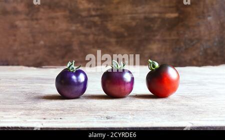 Tomates bleues inhabituelles à différents stades de mûrissement sur un arrière-plan en bois