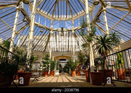 La maison Temperate dans les jardins botaniques royaux, Kew, la plus grande des célèbres serres de verre victoriennes.