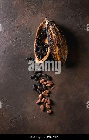 Variété de produits frais et secs de cacao cabosse de chocolat noir haché avec plus de brown texture background. Mise à plat, de l'espace
