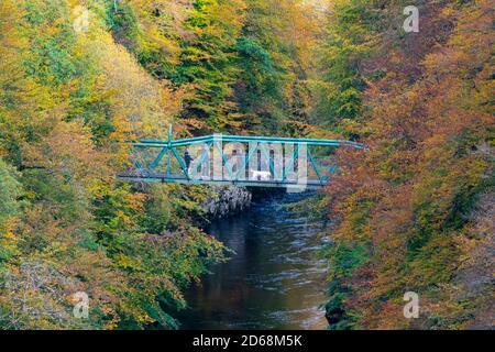 Les visiteurs admirent la vue depuis la passerelle avec les couleurs automnales sur les arbres entourant la rivière Garry au pont Garry près de Killiecrankie, Écosse, Royaume-Uni Banque D'Images