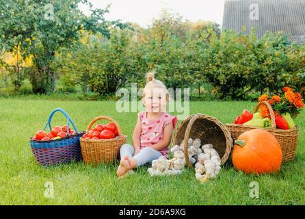 petite fille assise sur l'herbe parmi une variété de légumes tomates, poivrons, ail, citrouille Banque D'Images