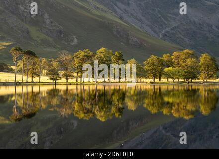 Été réflexions tôt le matin sur Buttermere dans le Lake District, Cumbria Angleterre Royaume-Uni