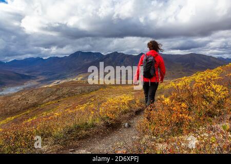 Femme randonnée le long de Scenic Trail sur une montagne, à l'automne