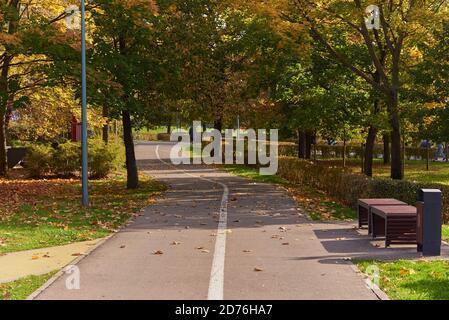 Route pavée dans le parc, divisée par des marquages sur les parties vélo et piéton.