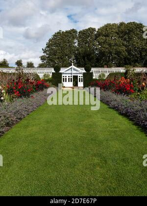 Bordure herbacée et serre. The Walled Garden, Houghton Hall & Gardens, Norfolk, East Anglia, Angleterre, Royaume-Uni. Banque D'Images