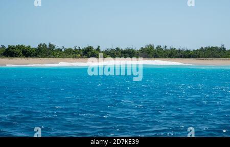 Magnifique plage de Sandy point avec flore indigène et eaux turquoise de la mer des Caraïbes à Frederiksted sur Sainte Croix dans les îles Vierges américaines