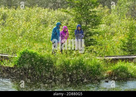 Les gens qui marchent sur un sentier naturel pendant une averse de pluie durant une tempête estivale dans les régions rurales de l'Alberta au Canada.