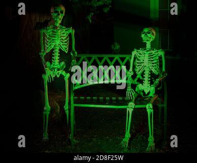 Squelettes et corneilles accrochés à l'extérieur d'une maison à Halloween fête