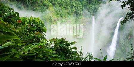 Magnifique cascade de TAD Fane dans la brume matinale, chutes d'eau magiques en saison de pluie, attractions touristiques dans le sud du Laos.