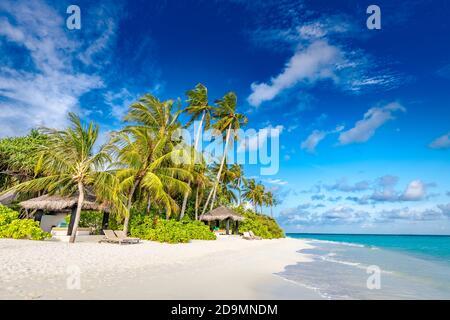 Fond tropical de plage comme paysage d'été avec balançoire de plage ou hamac et sable blanc et mer calme pour la bannière de plage. Des vacances parfaites sur la plage