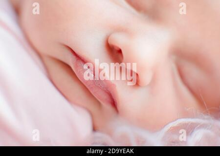 Photo en gros plan du visage du nouveau-né de race blanche. Portrait d'enfant, santé de la peau, sensibilité, maternité et concept de la puériculture - image. Sélection douce