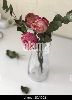 roses flétres dans un vase avec eau, mise au point douce Banque D'Images