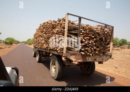 Région de Selingue, Mali, 25 avril 2015; coupe de bois de chauffage pour le transport de bois en ville. Banque D'Images