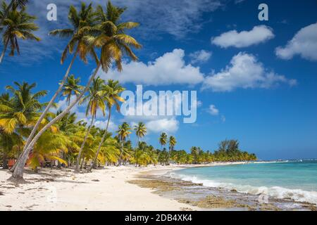 République dominicaine, Punta Cana, Parque Nacional del Este, l'île de Saona, Mano Juan, un pittoresque village de pêcheurs