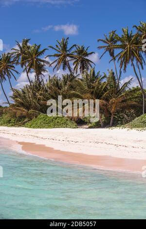 République dominicaine, Punta Cana, Playa Blanca