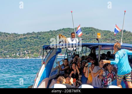 Bateau touristique avec des touristes photographiant des singes sur l'île de Koh Phi Phi en Thaïlande - 24 janvier 2020