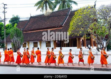Les moines bouddhistes reçoivent du riz de la part des locaux au cours d'un rituel quotidien tôt le matin connu sous le nom de Sai Bat (alms du matin) à Luang Prabang, au Laos