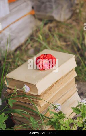 Carte vintage avec pile de vieux livres et rose rouge fleurs à l'extérieur