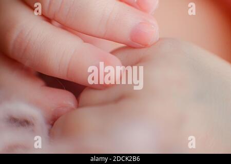 Photo de détail macro de la main du nouveau-né caucasien. Portrait d'enfant, santé de la peau, tendresse, maternité et concept de puériculture - image. Sélection douce