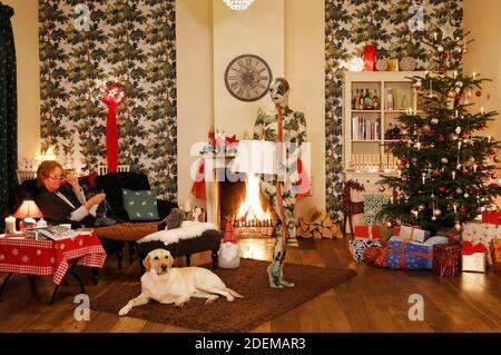 """Peinture de Noël avec la grand-mère Sabine S., chien Louis, modèle Marilena comme une lampe de plancher qui laisse l'ensemble et modèle Darky comme un cadeau au restaurant Château Hehlen. Travail sur le clip de Noël """"le Noël de l'artiste - UN Bodypainting clip vidéo de l'atelier Düsterwald"""" par Jörg Düsterwald et Alexander grosse-Strangmann. Hehlen le 28 novembre 2020"""