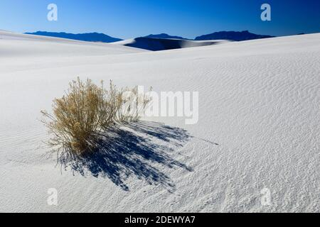 Géographie / Voyage, Etats-Unis, dunes de pierre en plâtre, monument national de White Sands, Nouveau-Mexique, Amérique du Nord, droits supplémentaires-déstockage-Info-non-disponible