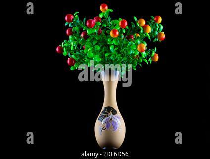 Plantes fantastiques avec des fruits dans un vase en céramique sur un arrière-plan noir