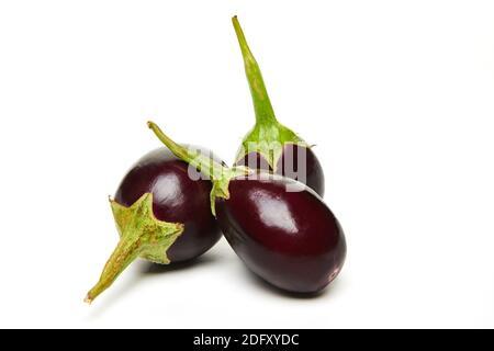 aubergines fraîches sur fond blanc