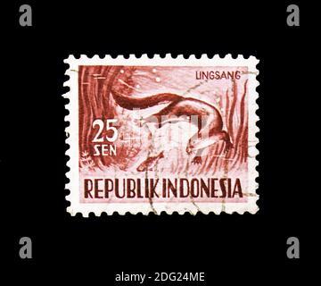 MOSCOU, RUSSIE - 18 AOÛT 2018 : un timbre imprimé en Indonésie montre l'Otter (Lutrogale perspicillata), série Fauna, vers 1956