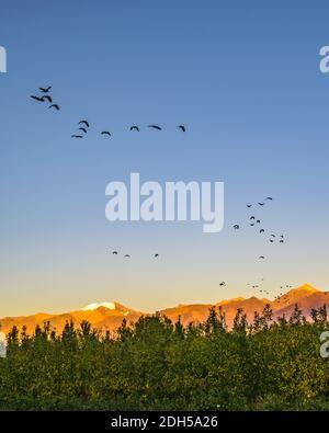 Paysage de montagnes, province de San Juan, Argentine
