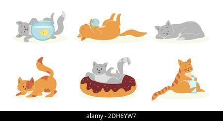 Ensemble de chats gris et orange amusants. Animaux de compagnie drôles, chatons douillets et mignons jouant, dormant, mangeant. Illustration vectorielle pour les animaux domestiques, félin, conc. Animaux