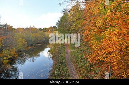 Photos pour une caractéristique sur Wellesley Woodland, Aldershot - automne Weekend Walks caractéristique. Canal de Basingstoke.