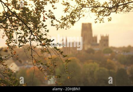 Couleur d'automne à Pelaw Woods près des rives de la rivière Wear dans la ville de Durham. Photos de la cathédrale de Durham photo prise le 16 octobre 2020