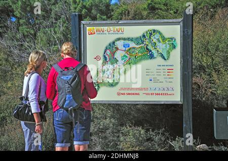 Up de Wai-O-Tapu Thermal Wonderland, Rotorua, Bay of Plenty, North Island, New Zealand