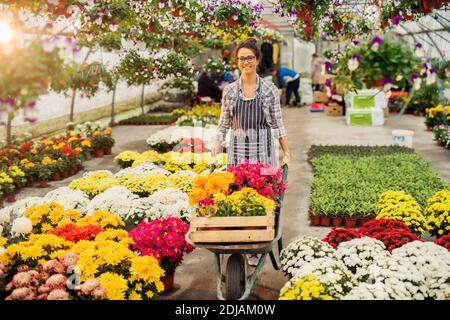 Joyeux fleuriste robuste femme tenant chariot plein de fleurs dans la belle serre lumineuse.
