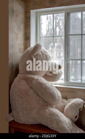 Grand ours en peluche avec vue sur LE monde extérieur