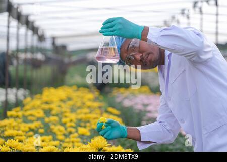 Portrait d'un scientifique tenant du liquide dans un flacon conique à Greenhouse