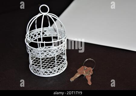 Vue en grand angle de la cage blanche et des clés sur fond noir