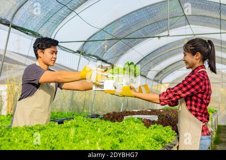 Botanistes travaillant dans Greenhouse