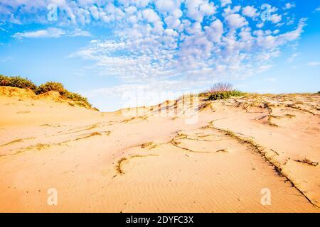 Dunes de sable le long de Mungo Brush Rd dans Myall Lakes National Stationnement