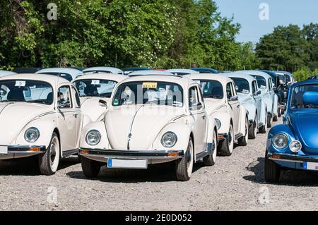 Allemagne, Caputh: VW Beetle Réunion de la série spéciale última Edición. Volkswagen de México à Puebla n'a produit que 3,000 voitures en 2003.