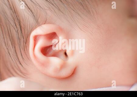 Vue en gros plan macro de l'oreille du nouveau-né de race blanche. Portrait d'enfant, santé de la peau, sensibilité, maternité et concept de puériculture. Mise au point sélective douce