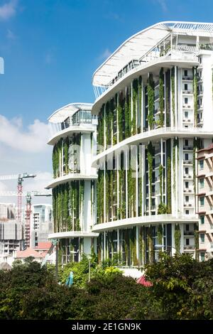 Vue extérieure de l'immeuble d'appartements Tembusu à Singapour avec une façade biologique vivante.